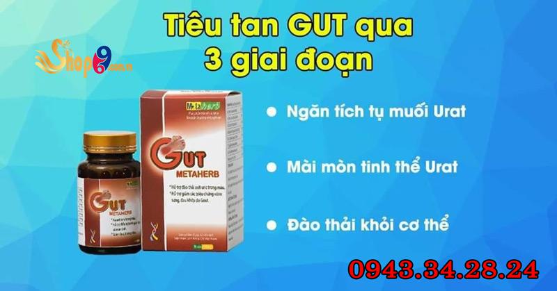 cách sử dụng gut metaherb