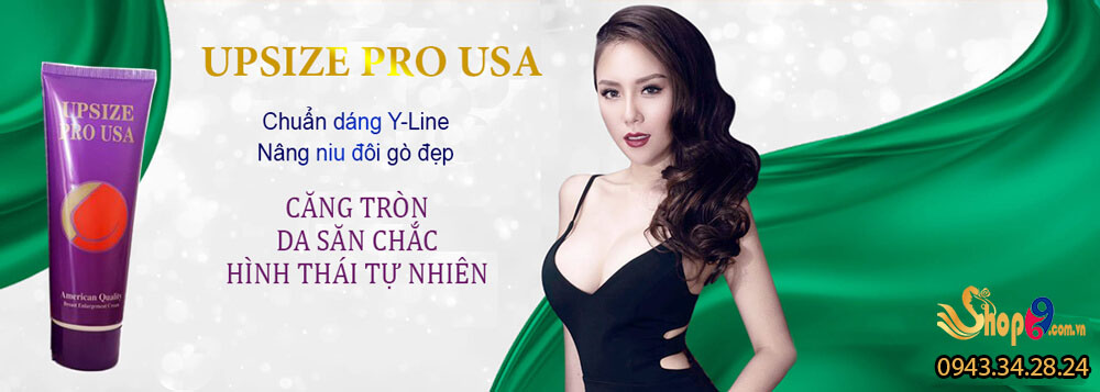 Upsize Pro USA